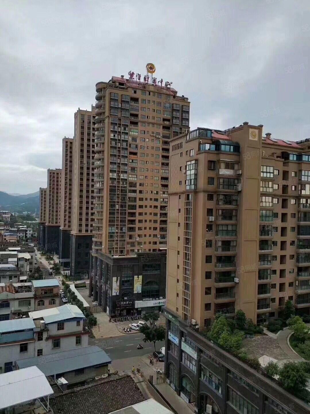 紫金财富中心大套房,县城中心繁华热闹的购物地方