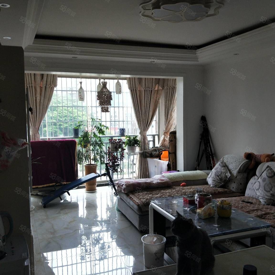 金龙豪城2室精装房出售46.8万
