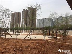 丽景明珠西区框架小高层144平方
