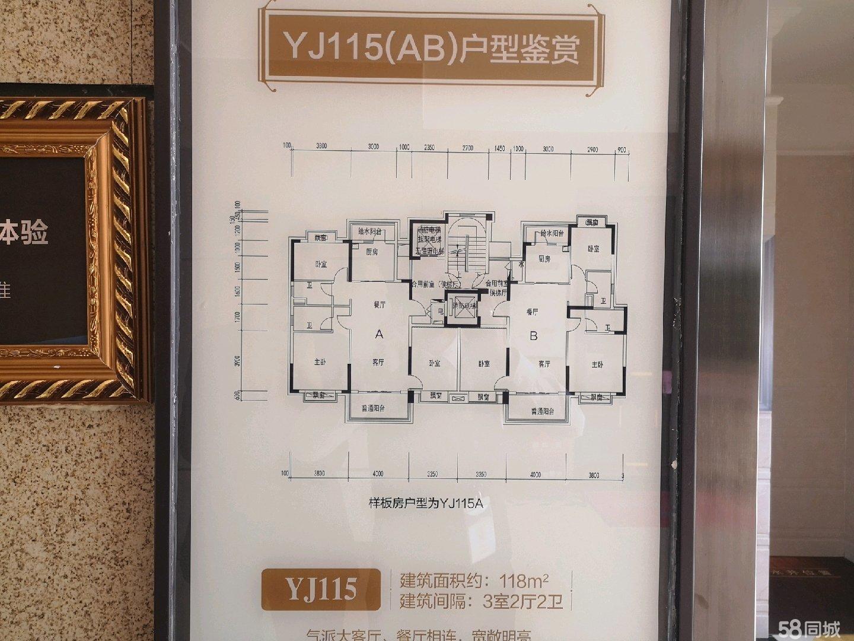独梯独户电梯可入户设计余庆市场独家发售