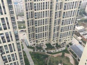 卫东东城国际3室1厅1卫117平米