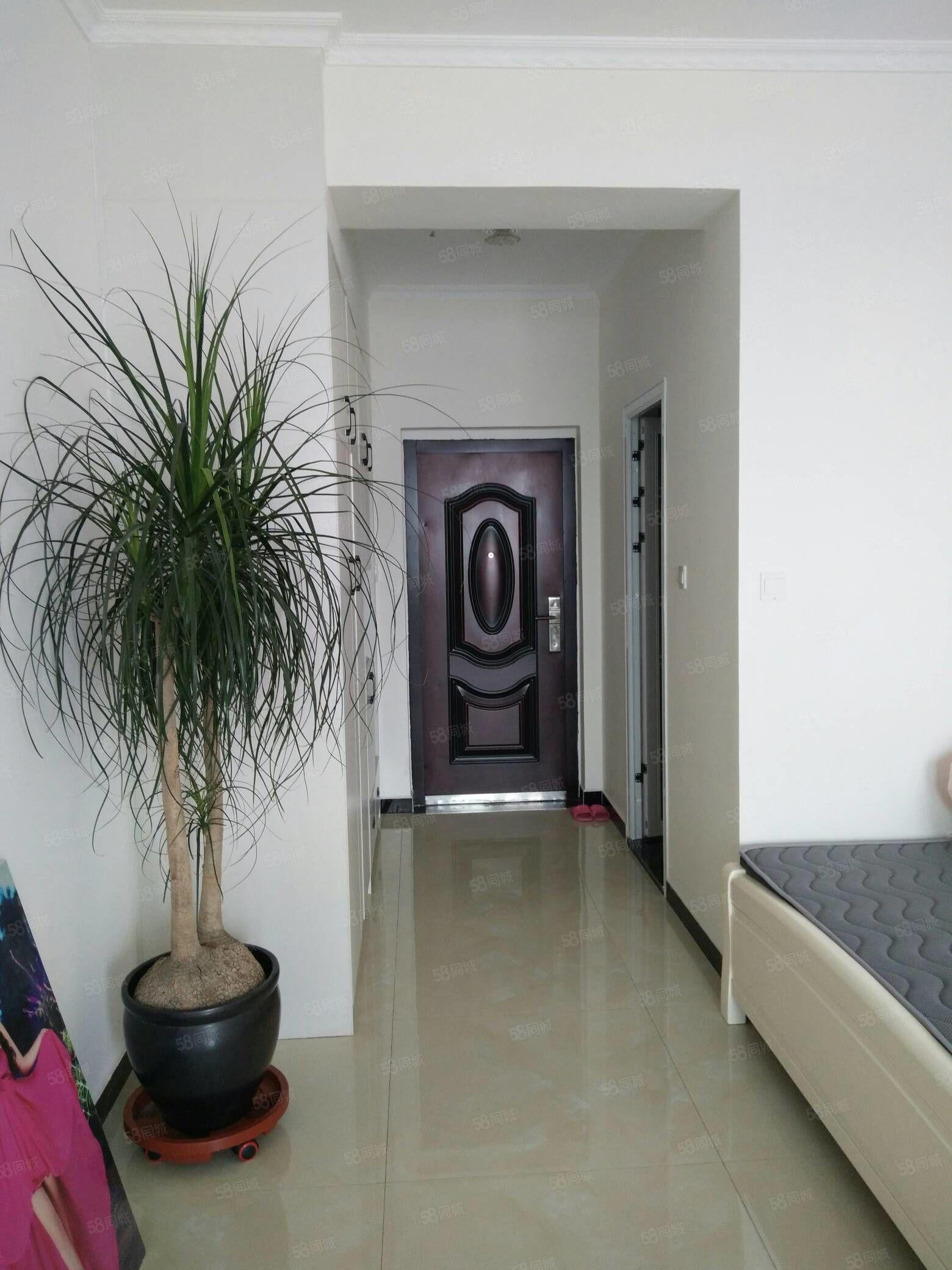 翔宇花园附近新装修公寓户型超好采光充足位置好包合同