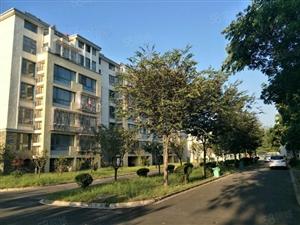 沭东花园多层一楼大两室户型通透方正楼层采光极好小区环境优雅