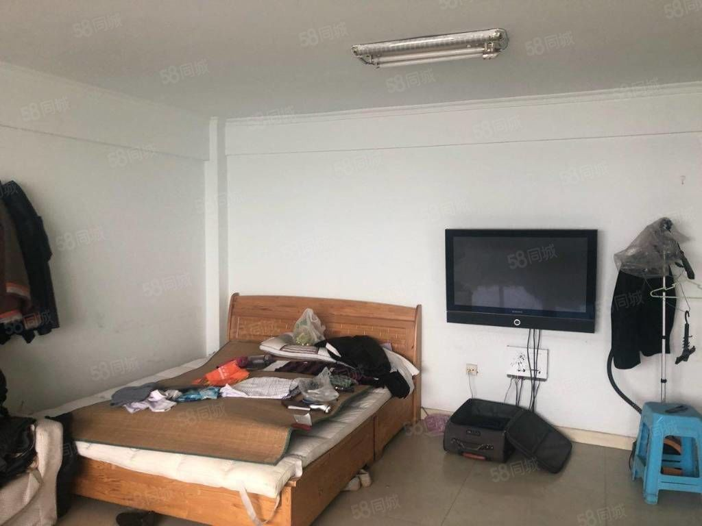 可季度付,洛陽路天正嘉園小區12樓一室出租,家電齊全。