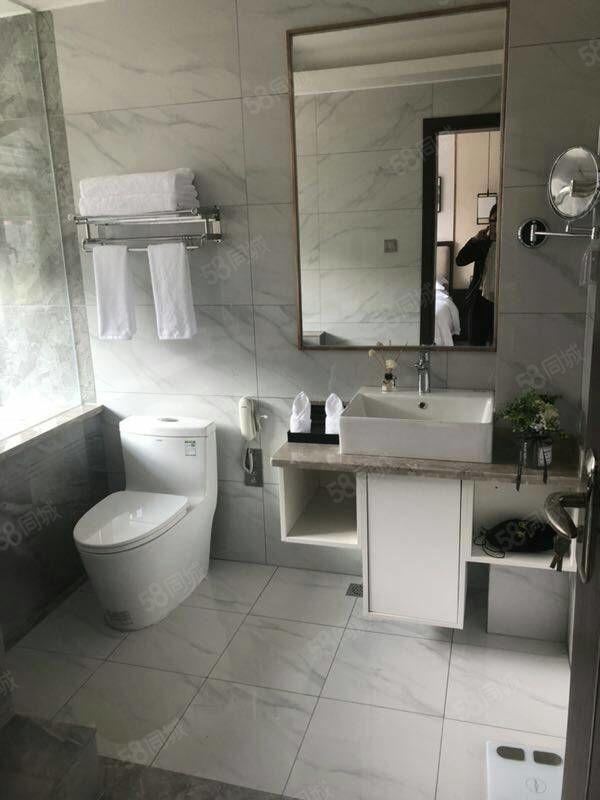 温泉入户拎包入住两居室轩敞设计户型各区功实用