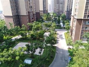 广三中旁,学区房,云轨站旁,位置好,一口价41.5万不讲