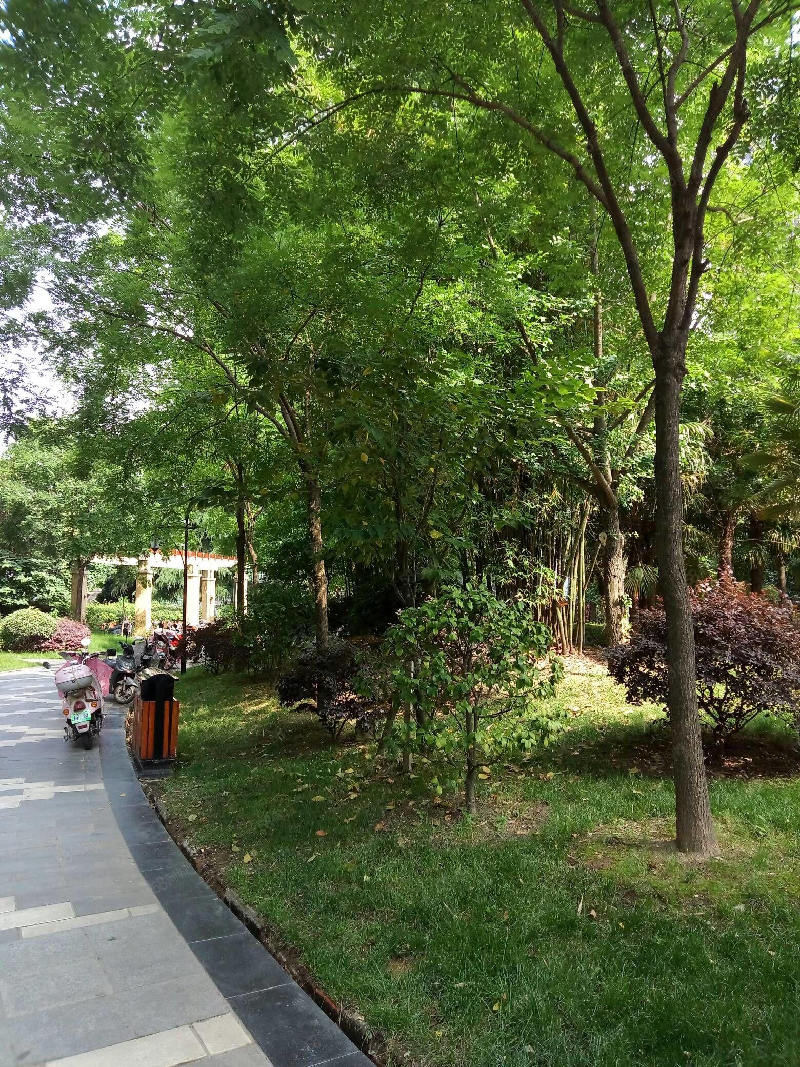 中心广场附近二居室一楼带小院子出售
