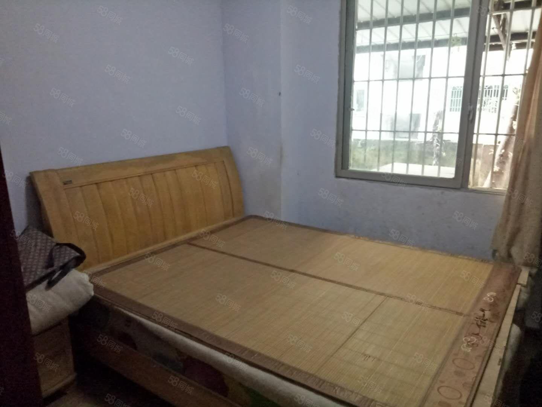 洗墨路标准1室1厅可改两室一口价18.8万就一套先到先得