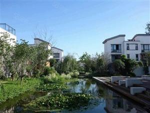 急售,建业生态新城,经典3居,带前后小院。
