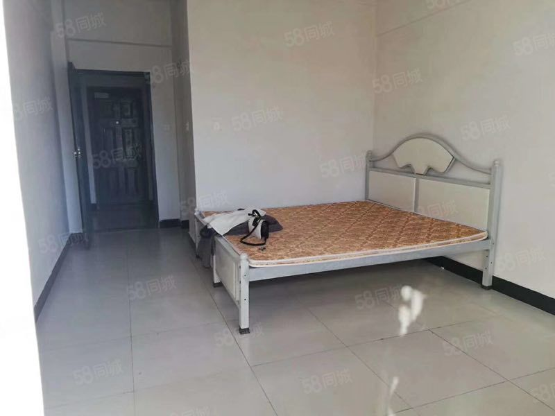 中心商务区公寓出租,45平米一室一厅一卫800元月。
