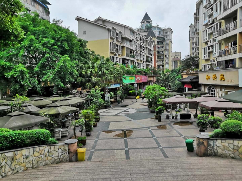 梓小旁肖巷子藤王阁3楼带2个平台花园精装大三房出售