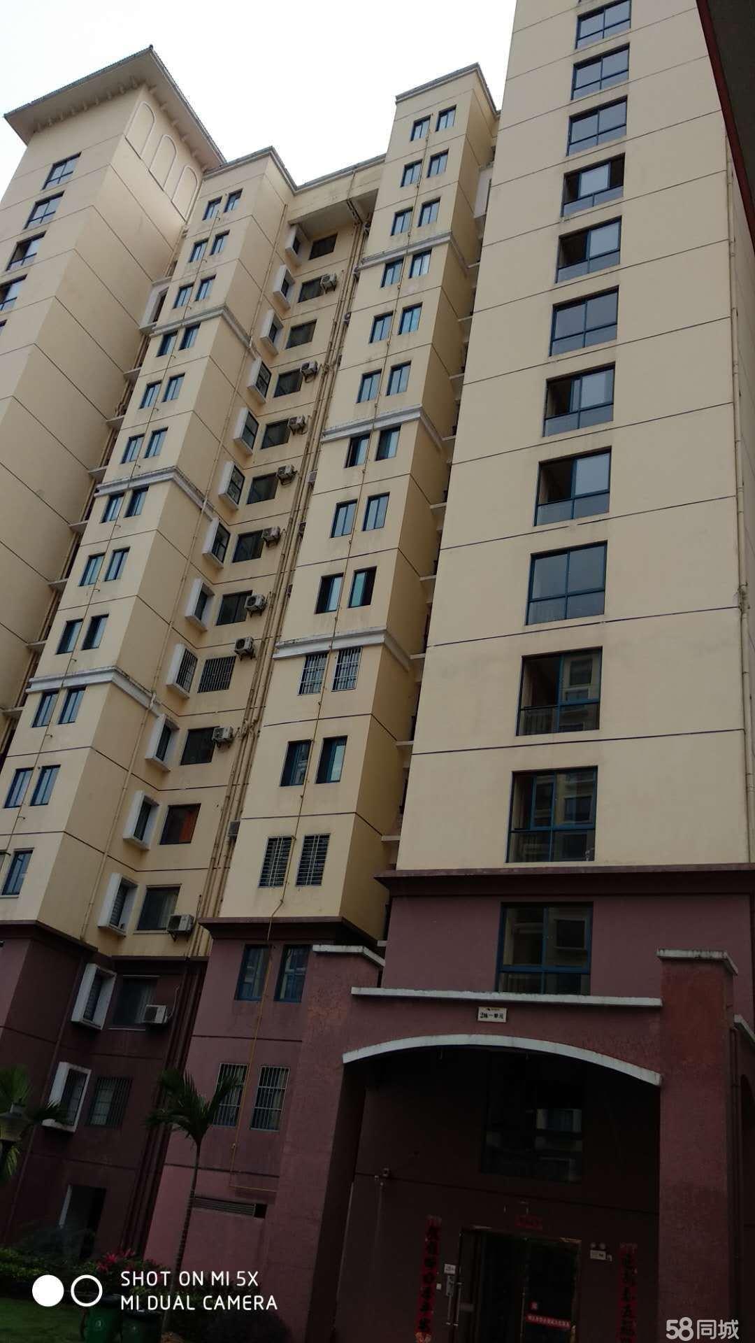 金江镇四季春城不老泉业主急1室1厅1卫45.5平米