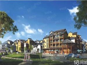 抚仙湖边旅游投资小镇,回报相当高,商铺客栈公寓