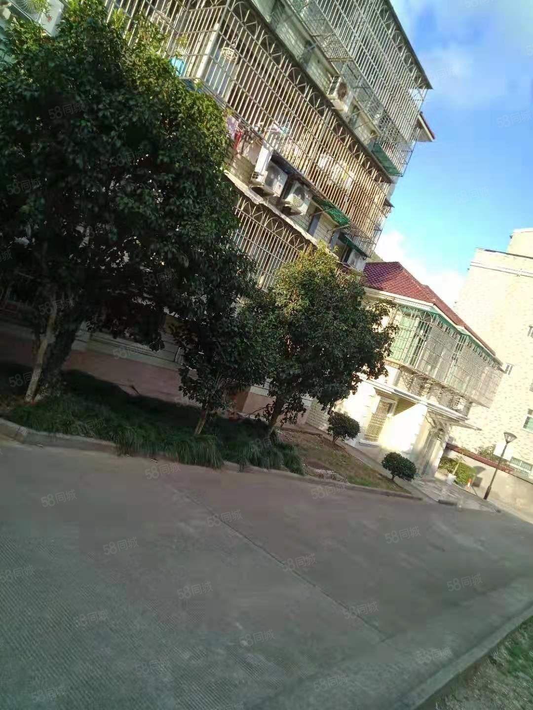 畚金别墅1至2楼160+院子99年房03年装