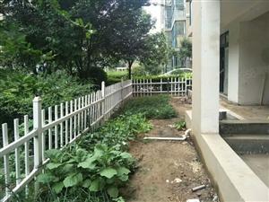莱茵河畔1楼带花园满五唯一稀缺房源不可错过