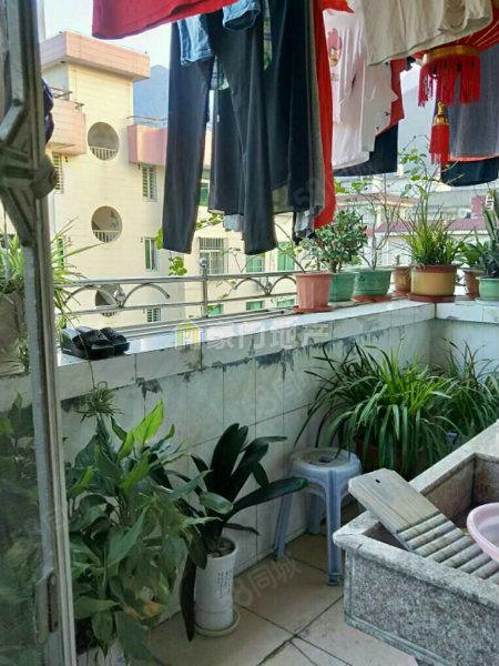 蕉城南路国税花园有小区有门卫交通方便总价不高