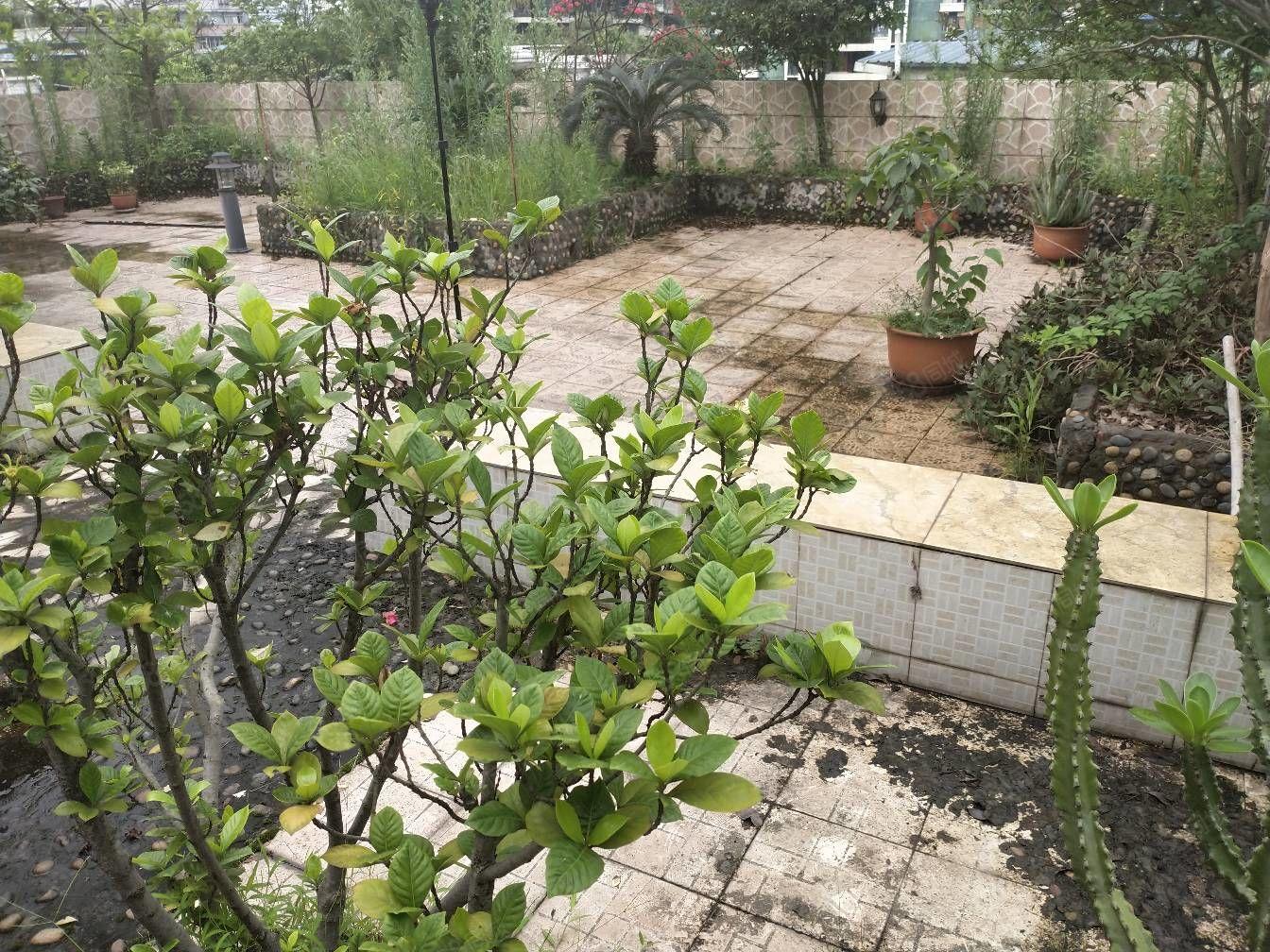 匯東單價3000多尚東國際旁,楠桂苑內躍5室,帶個大花園