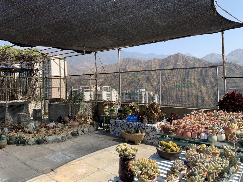 老市委有線電視臺精裝3室帶花園裝修保持好停車免費看房免費