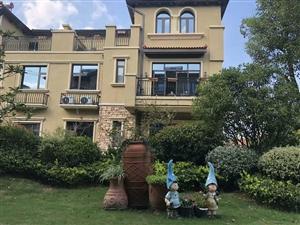 大丰特级别墅碧桂园翡翠东郡双拼别墅仅9500一平送超大花园