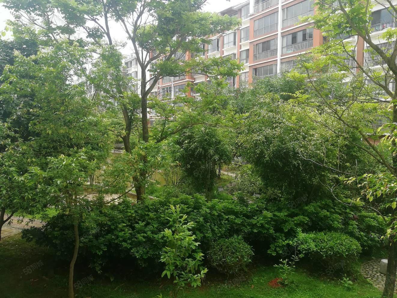 岱骏嘉园2楼好房133平3室毛坯,同时里面有一车库出售