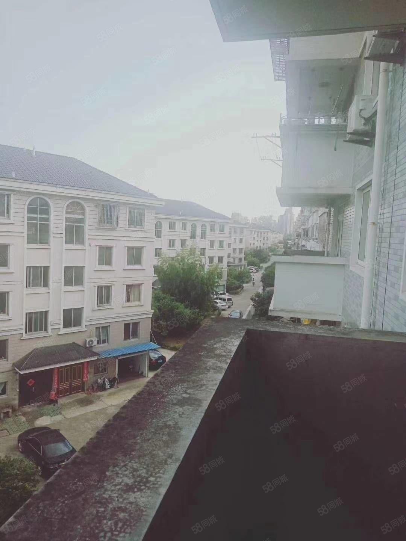 大洋街道柏葉中路春雨置業4樓103平現澆房大洋二小滿五唯一