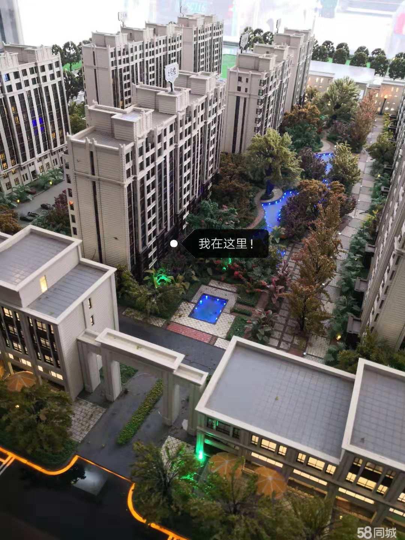 卢龙未来城一楼带花园带下房出售
