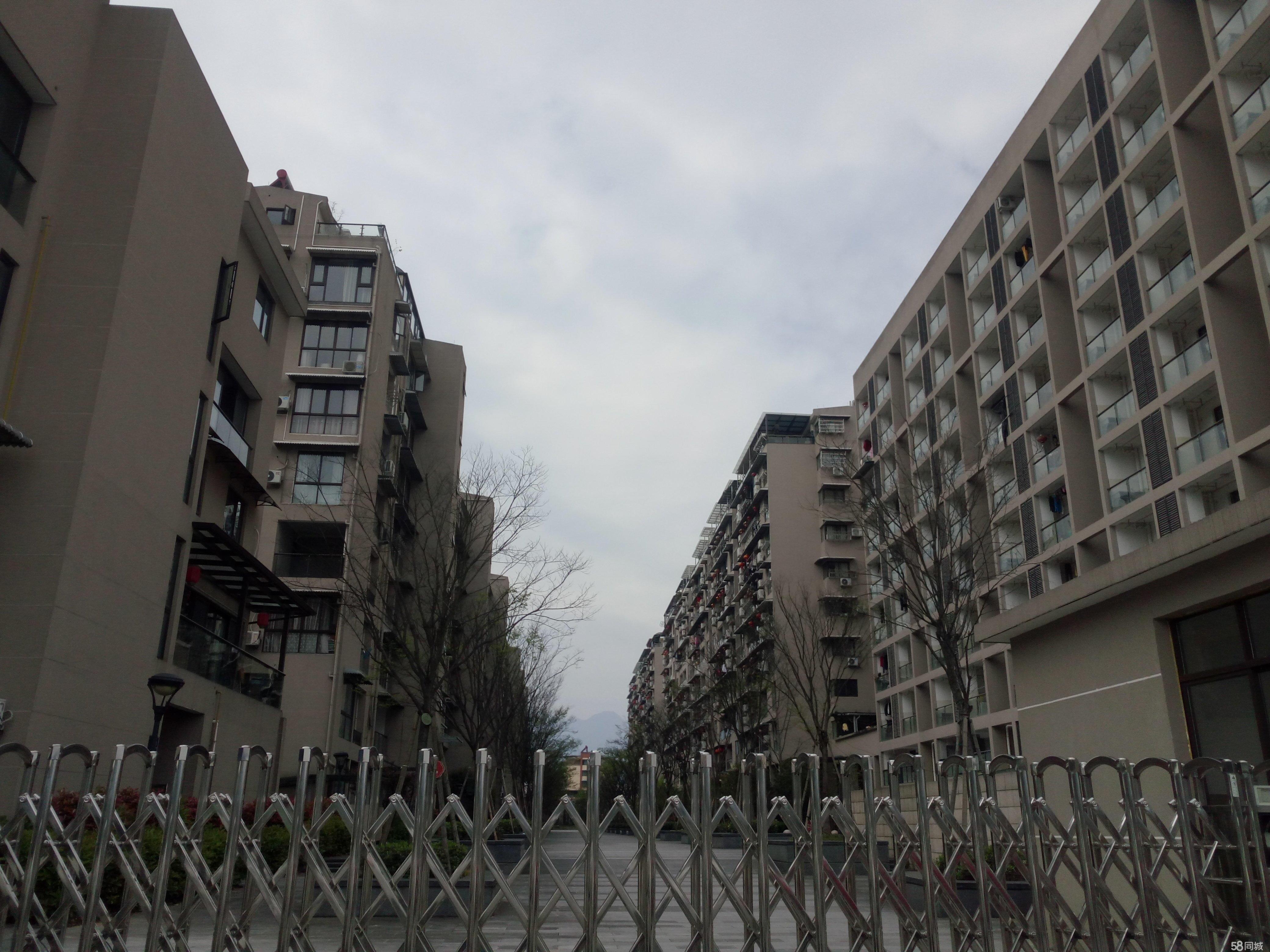云和云和城区九和小区4室2厅2卫180平米