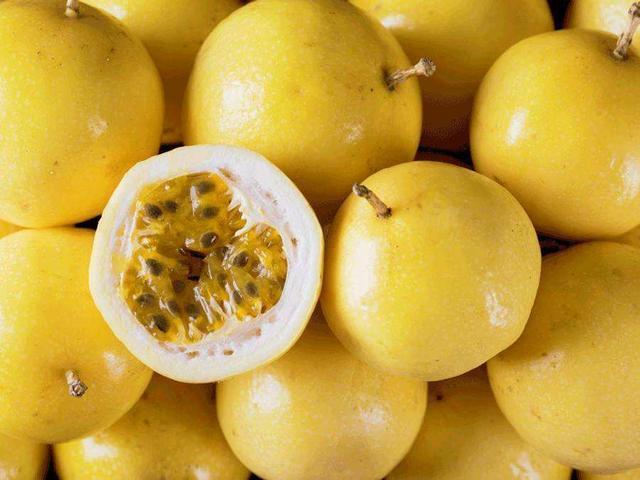 这种百香果比普通百香果更有营养,果香浓郁,维生素是橙子的几倍
